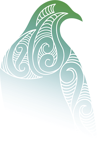 Stylised kereru graphic